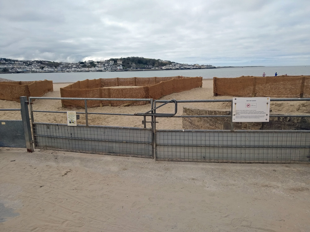 Dune management - area fenced off to allow regrowth in April 2020 - image 1