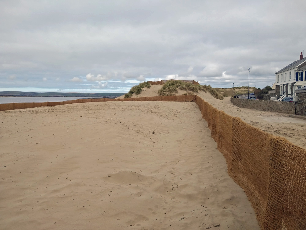 Dune management - area fenced off to allow regrowth in April 2020 - image 5
